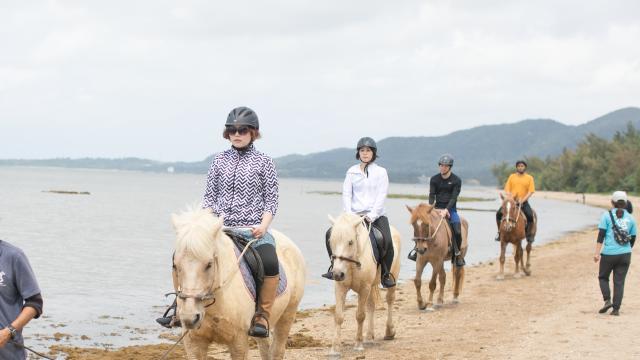 石垣島の海岸を巡る乗馬散歩